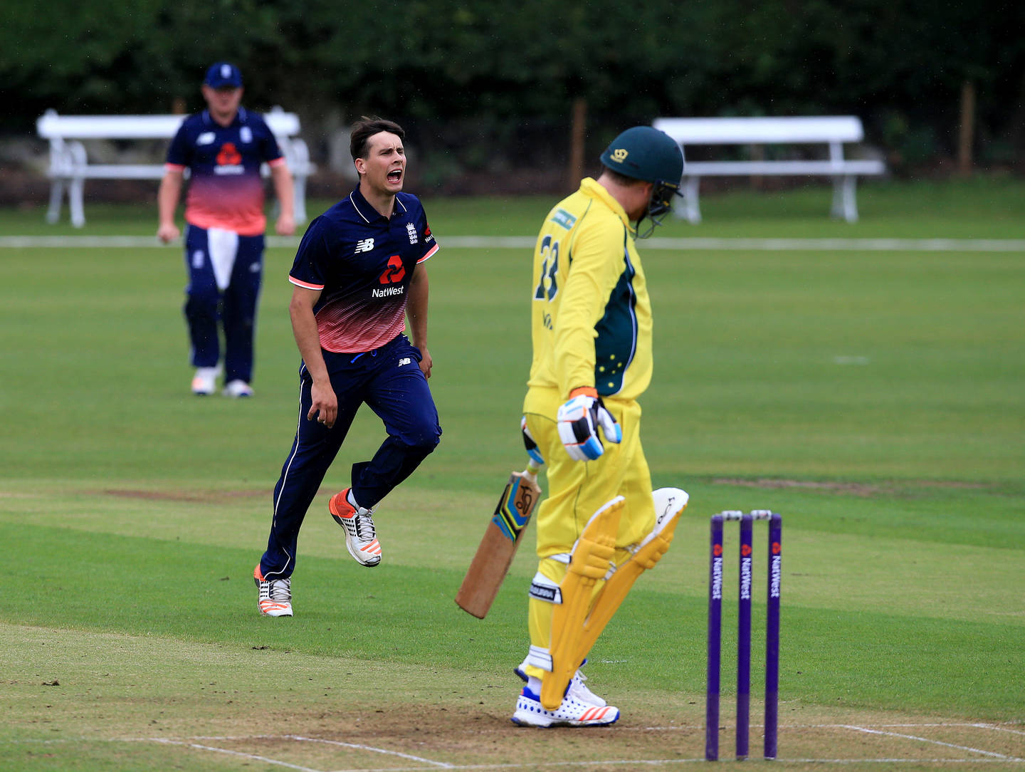 Taylor Young celebrates the wicket of Brett Wilson